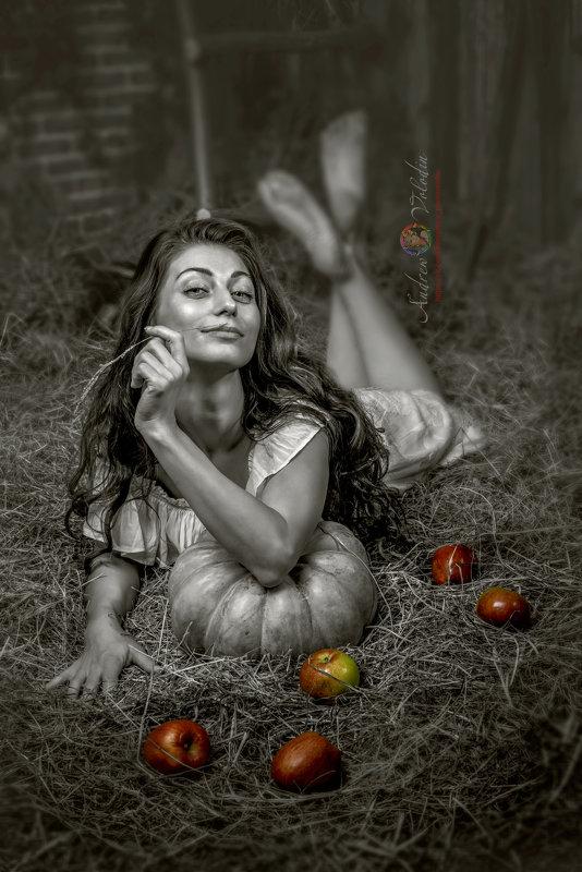 Яблоки - Андрей Володин