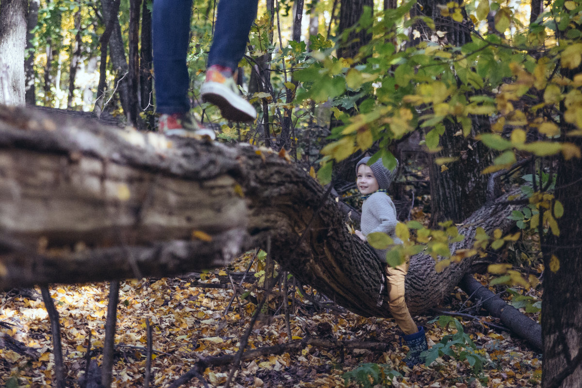 в лесу - Анна Вязьмина-Кирилюк