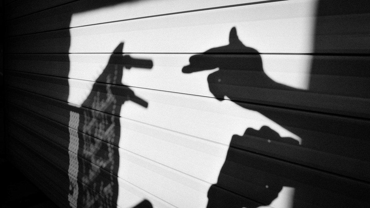 Собаки дикие . - Artem72 Ilin