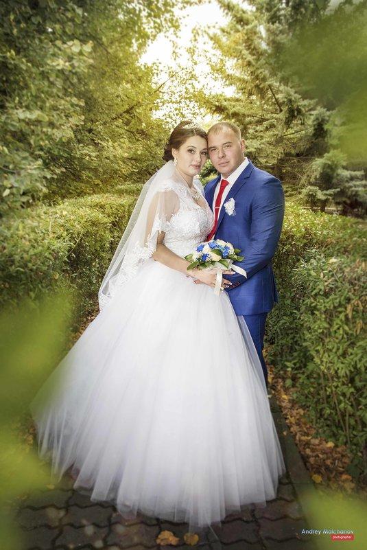 Свадьба Алины и Александра - Андрей Молчанов