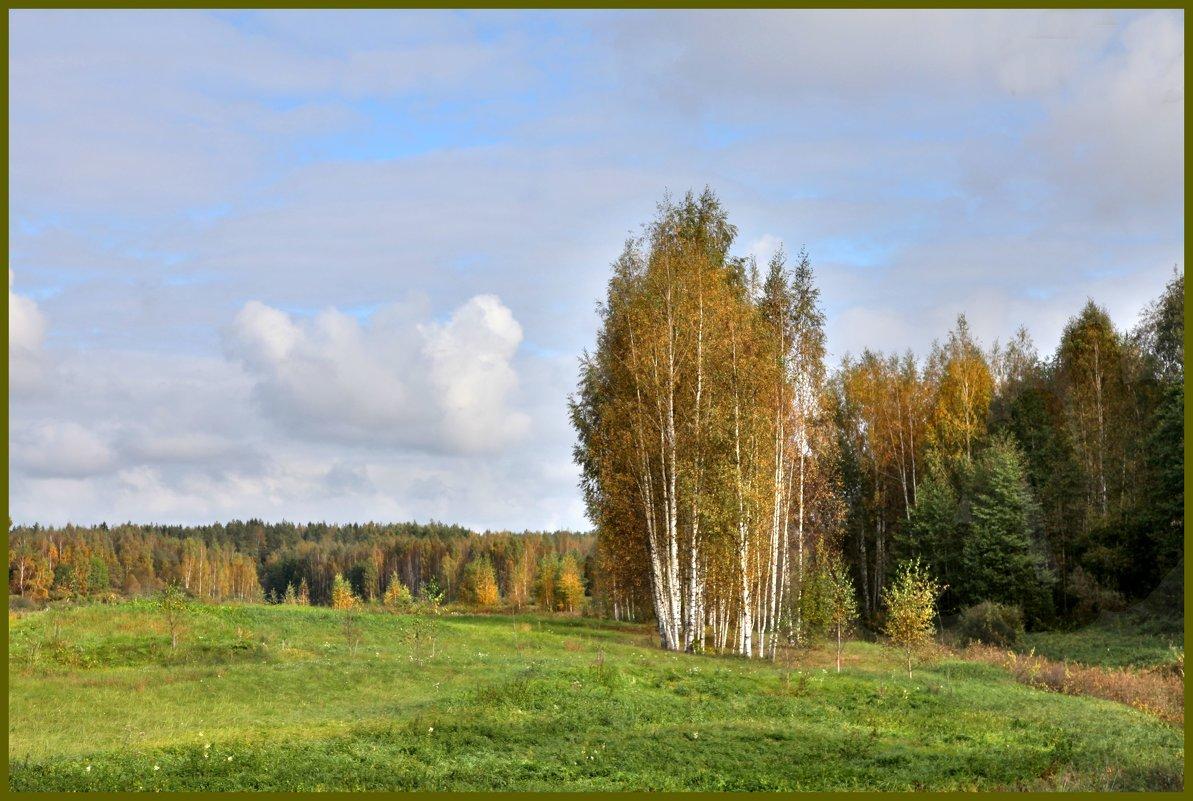 В поле. Петровское - Наталья