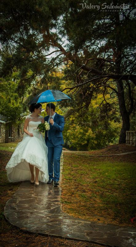 Свадебная прогулка - Валерий Саломатин