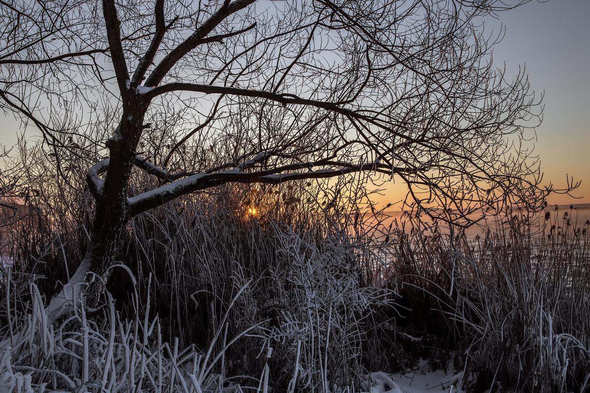 Январский вечер 2016 - Юрий Клишин