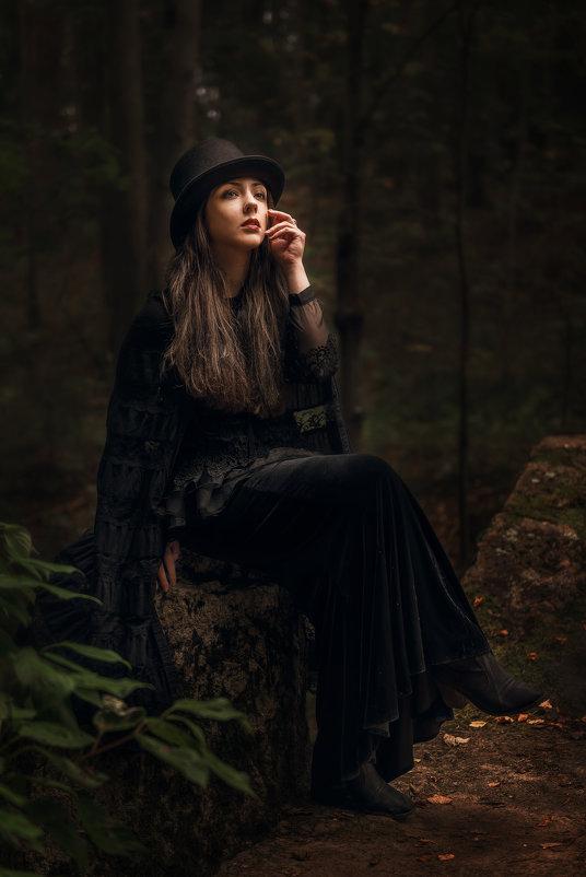 Портрет незнакомки - Владимир Горубин