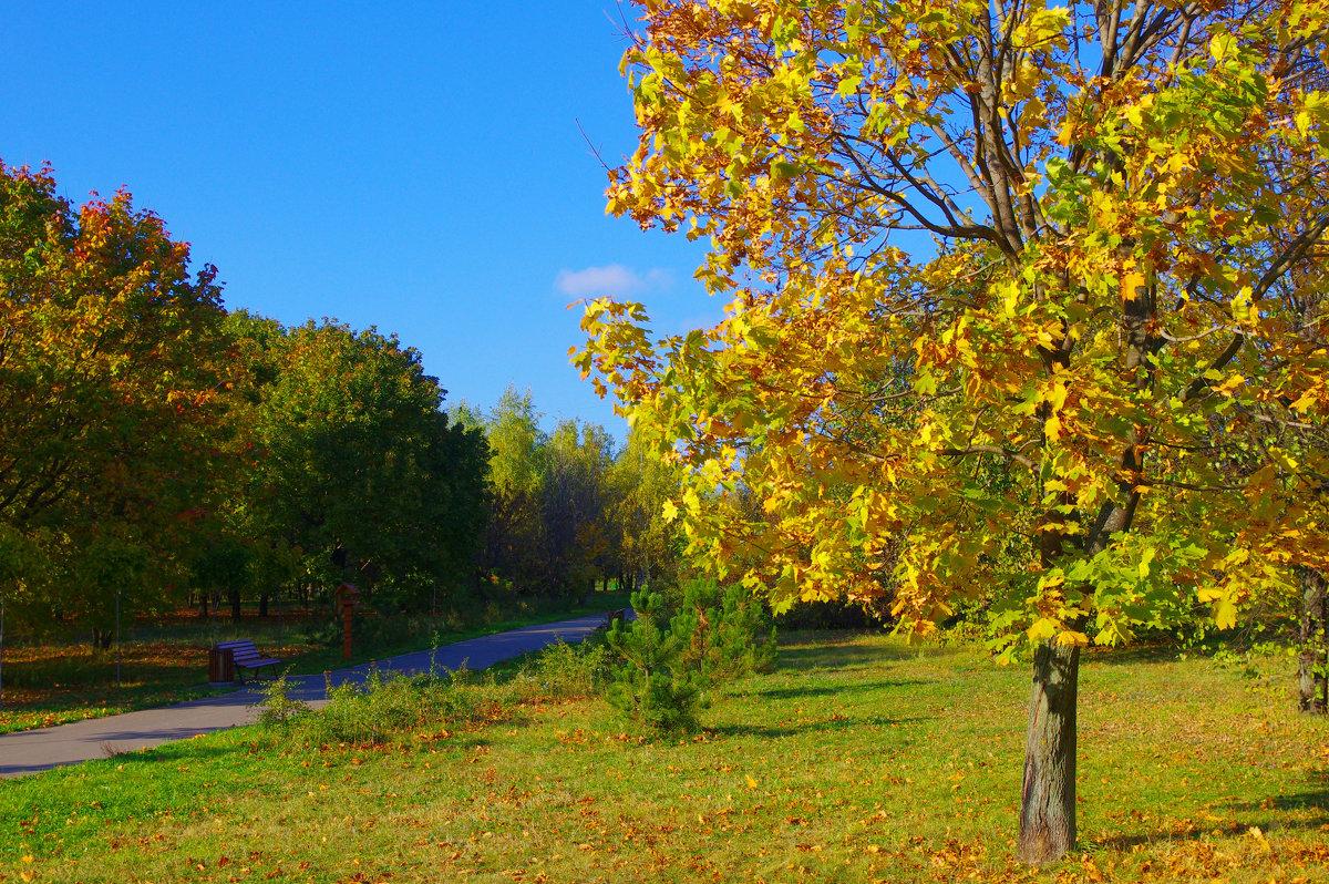 Осень. - Александр Атаулин