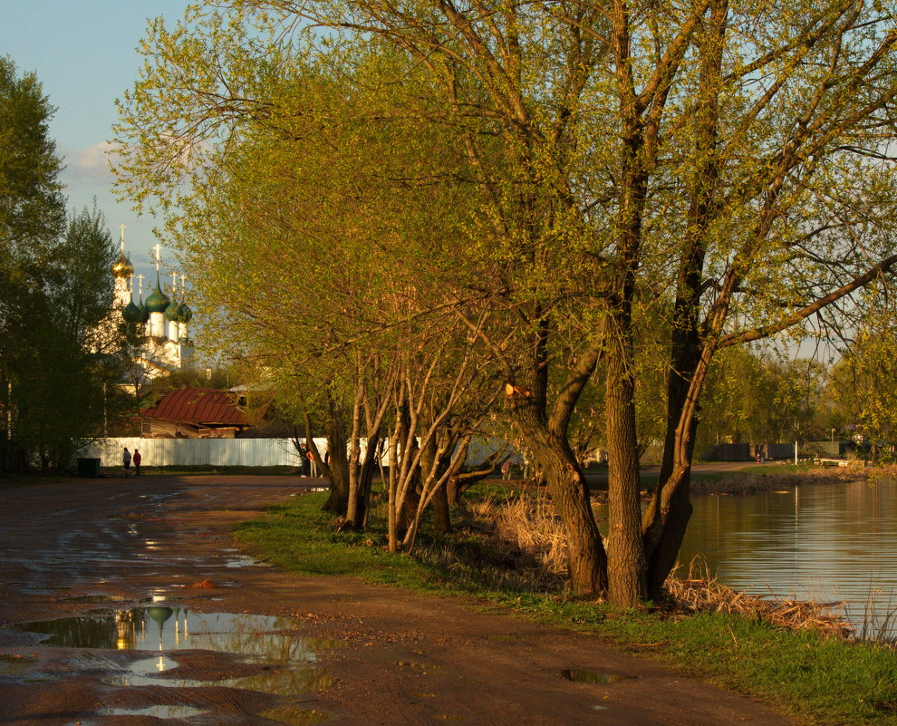лужи в Ростове - Александра