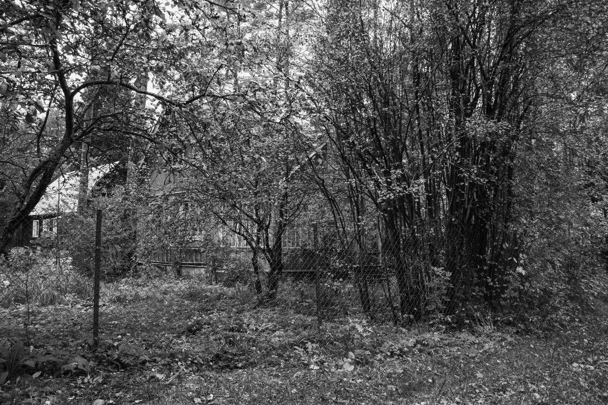 Осенью - Aнна Зарубина