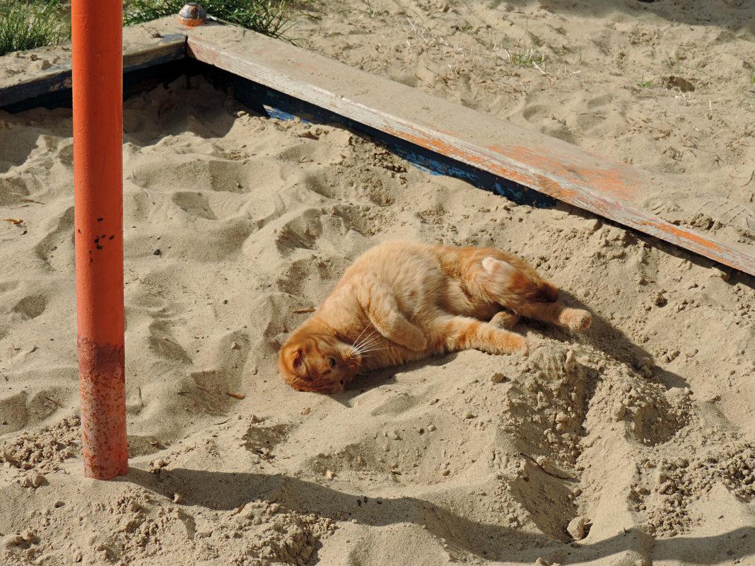 На пляже )))) - bemam *