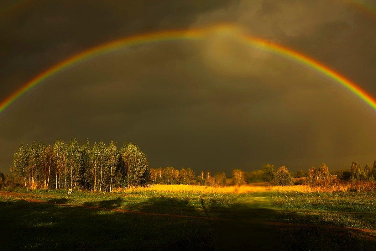 В дождь - Александр
