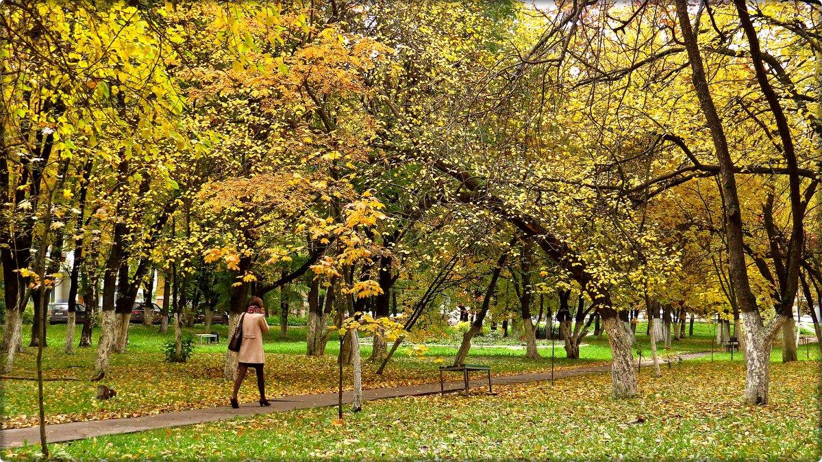 Осень гуляет по паркам и скверам....... - Елена Швецова