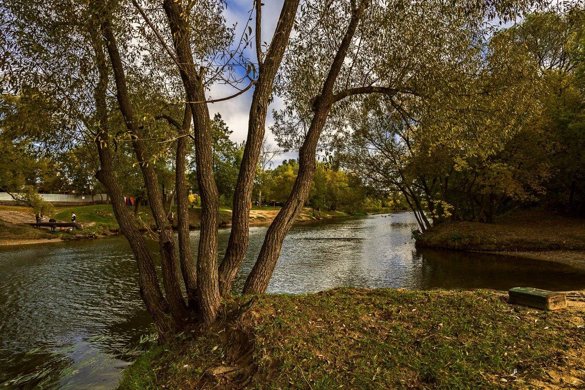 Река Цна - Александр Тулупов