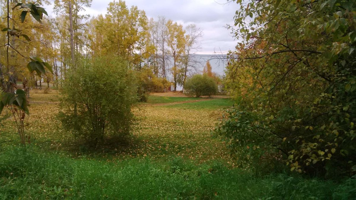 Золотая Осень - Tatyana Kuchina