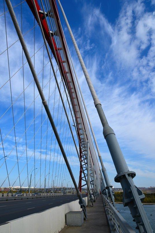 Бугринский мост. Новосибирск. - Андрей Ягодко