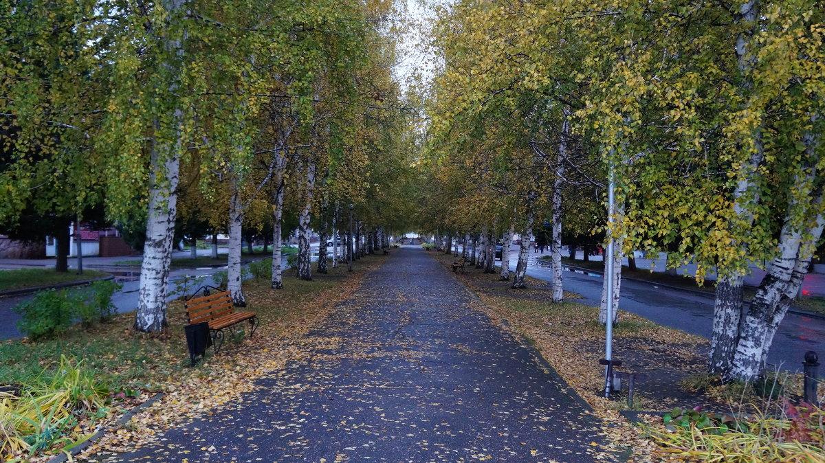 осенняя аллея - Alexandr Staroverov