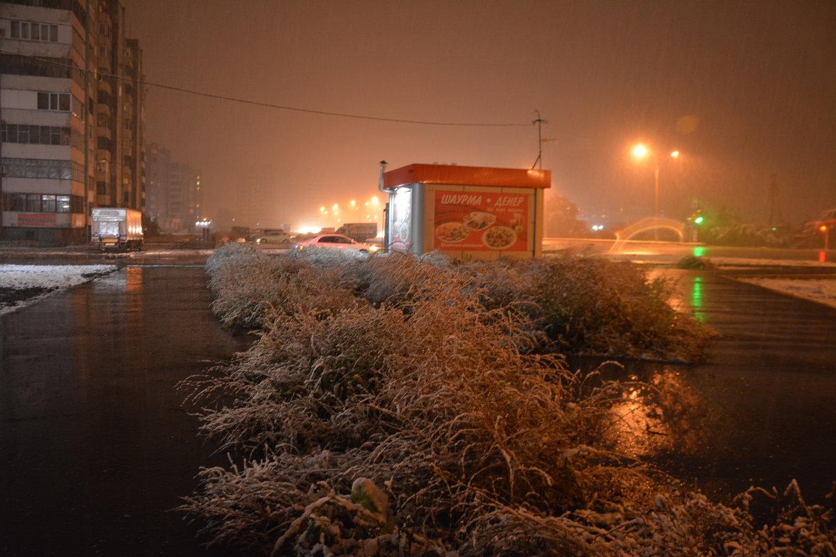 Первый снег в этом году - юрий Амосов