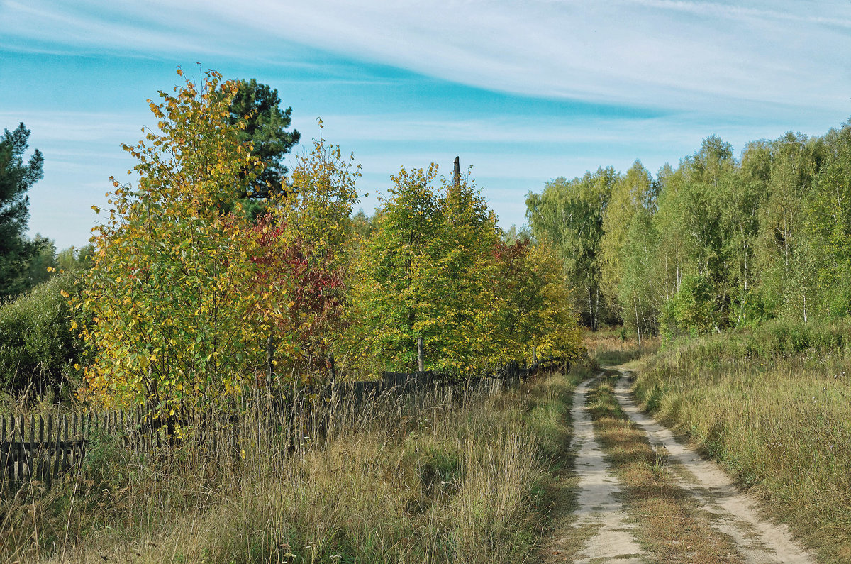 Дорожка в осень - Дмитрий Конев