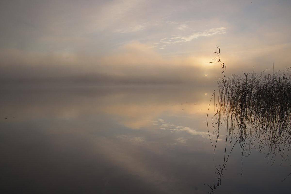 доброго всем воскресенья:) - liudmila drake