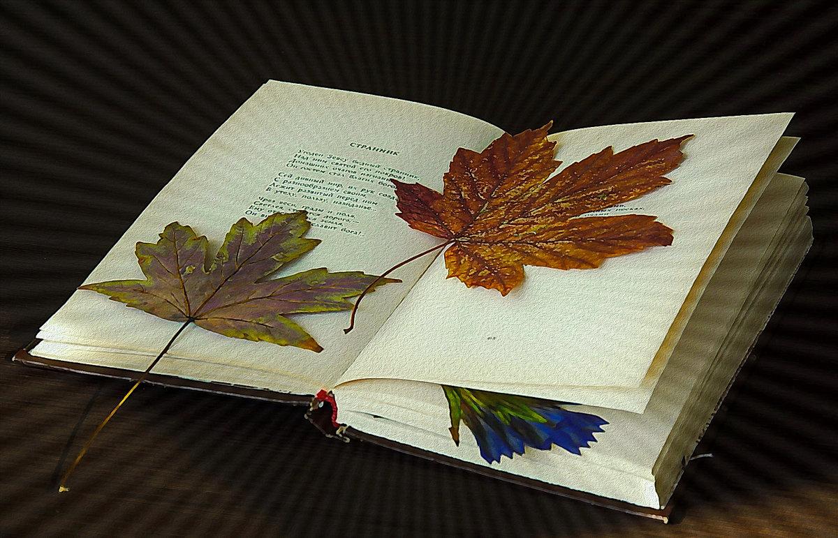 Осень воспоминаний - Мария Богуславская