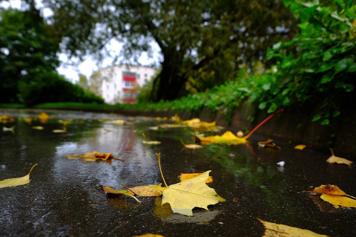 Осень в моём городе - Андрей Михайлин