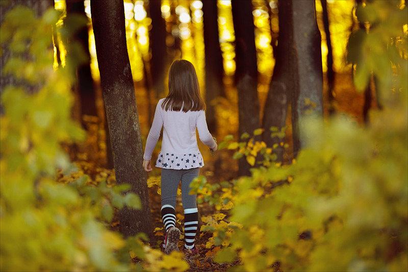 Волшебный лес - Инна Пивоварова