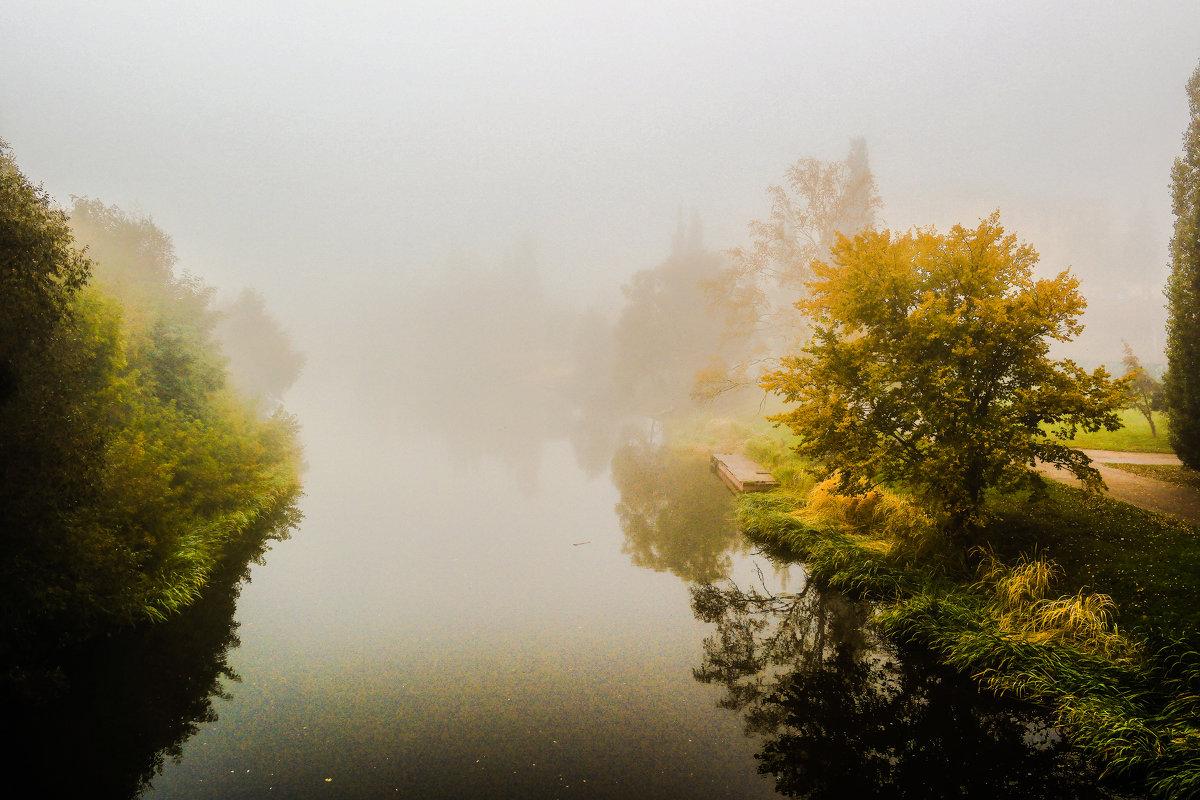 Туман......... - Александр Селезнев