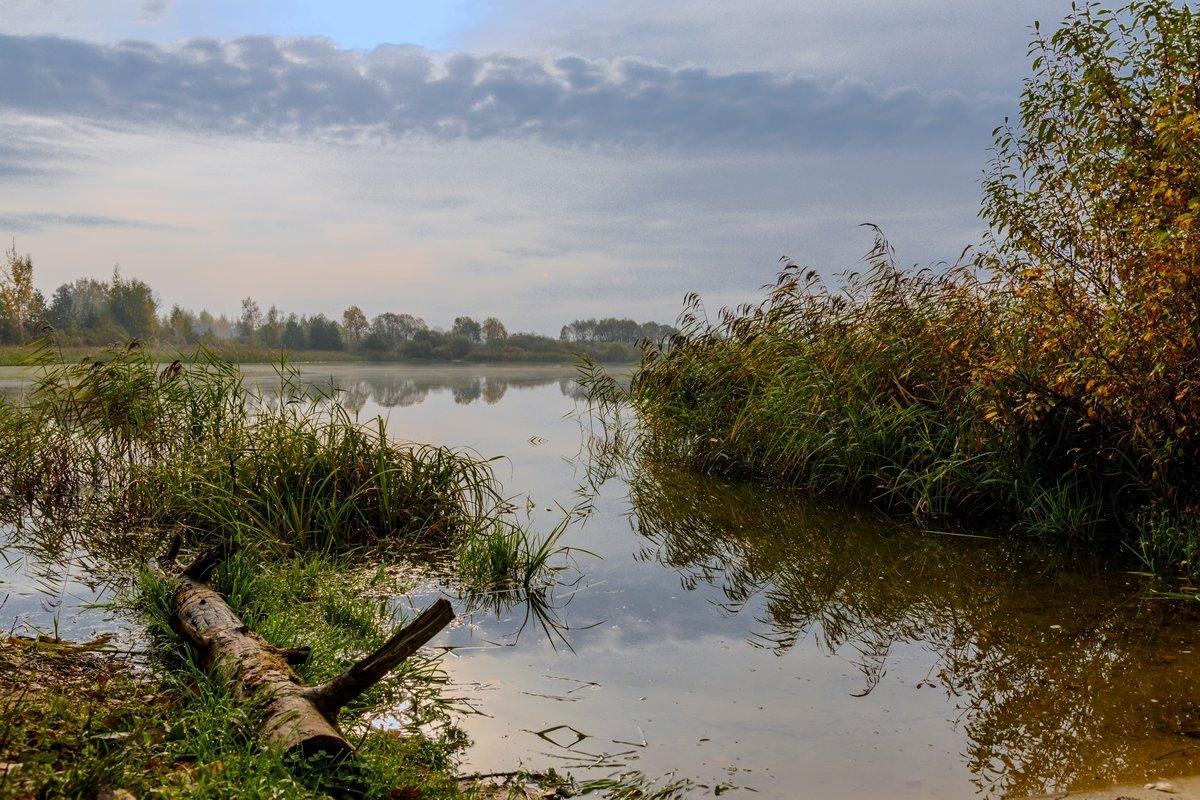 Утро возле озера - Юрий Бичеров