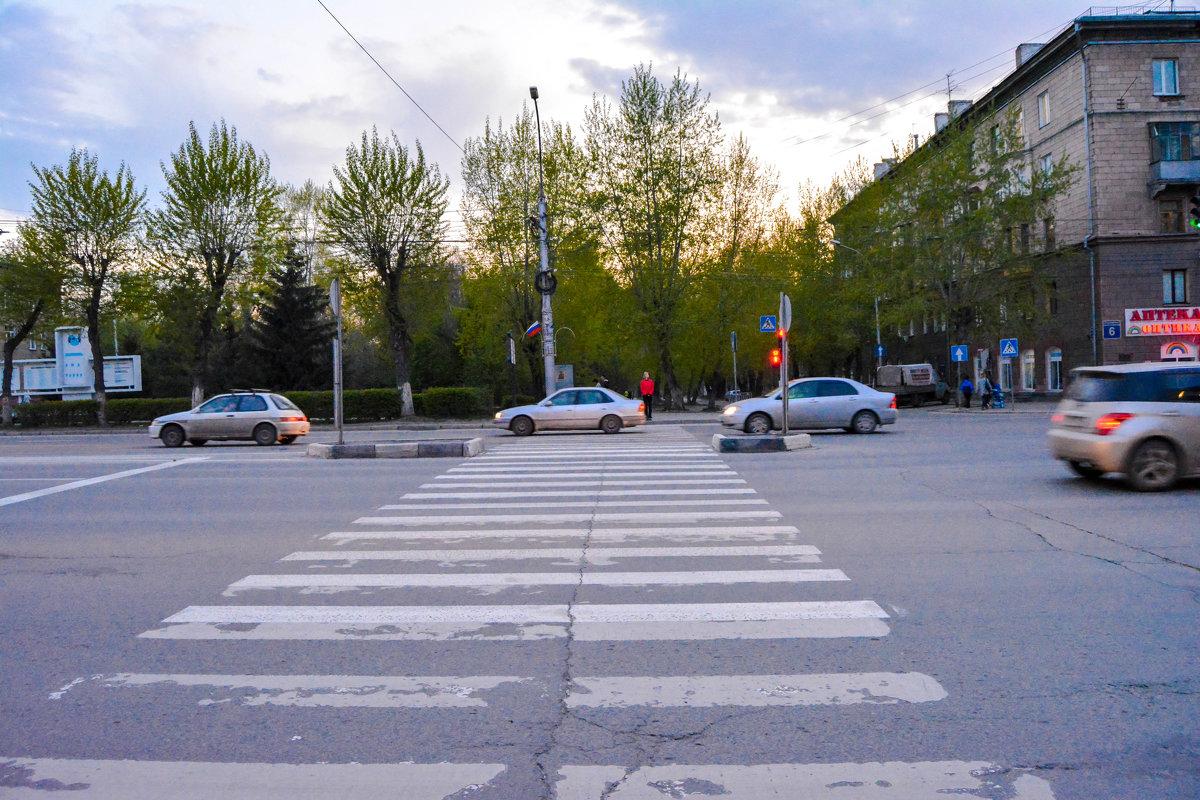 Переходим дорогу - Света Кондрашова