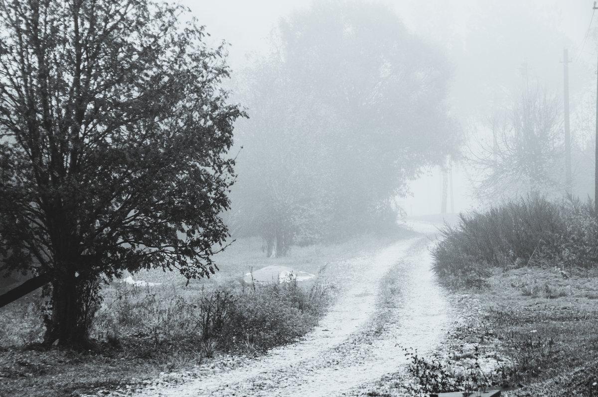 туман на улице - Тася Тыжфотографиня