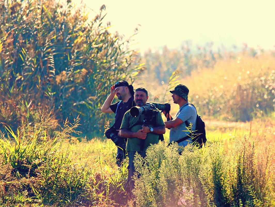 Фото охота - Николай Волков