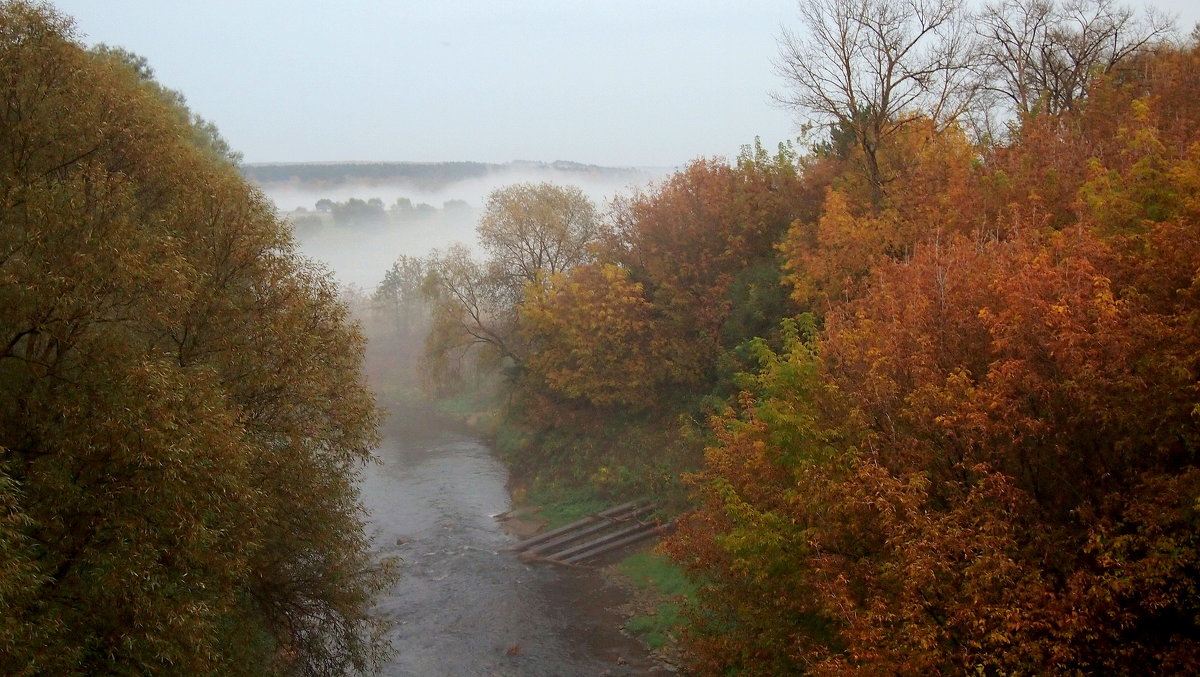 Осенняя Таруса - Надежда Бахолдина