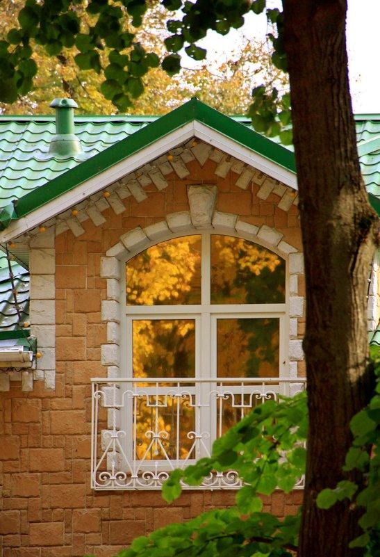 Осень в окне - Алексей Дмитриев