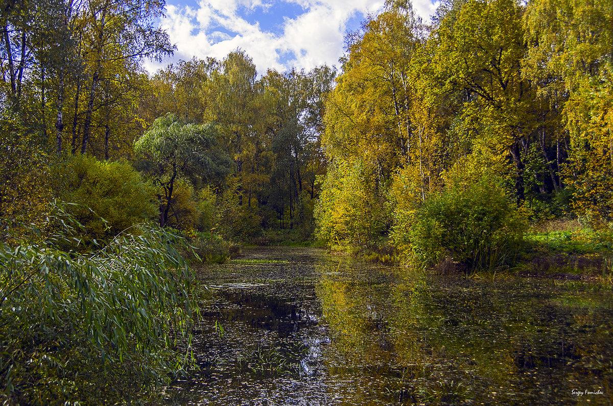 Осенний пруд - Сергей Фомичев