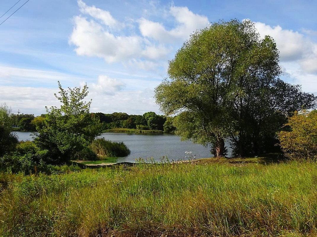 Вид на озеро со стороны - Маргарита Батырева