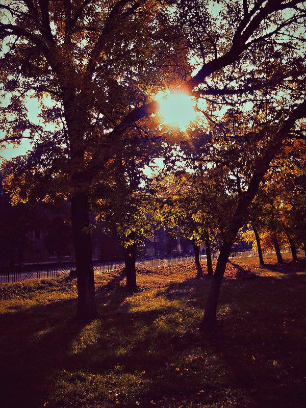 Холод. Чай. Тёплый плед. Книги. Осень. Октябрь... - Valeriya Voice