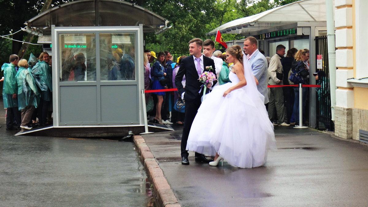 Дождь -для свадьбы хорошая примета? - Лара ***