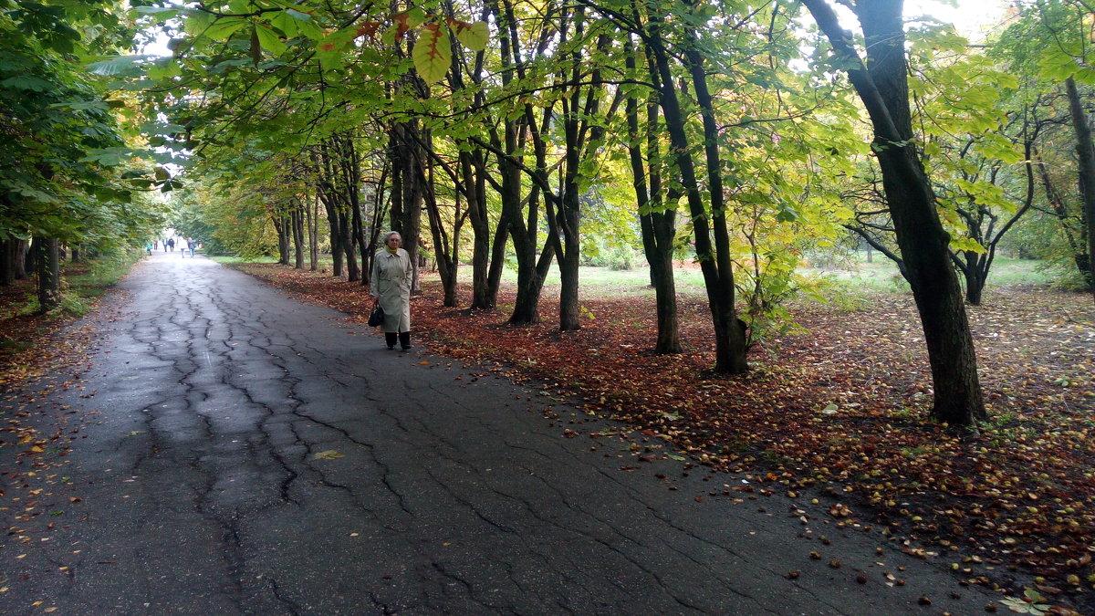 В ботаническом саду - Александр Алексеев
