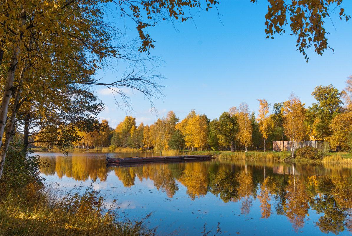 День в октябре 2 - Виталий