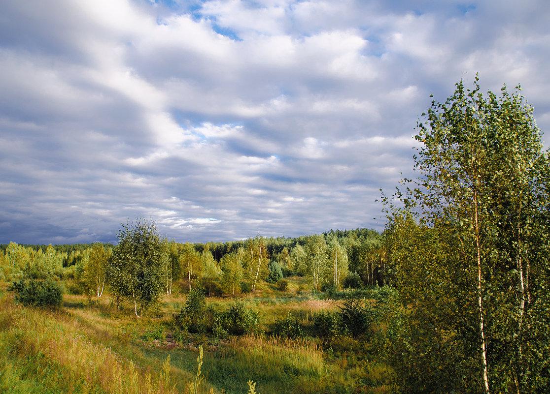 Прогулки на велосипеде - Владимир Рязанов