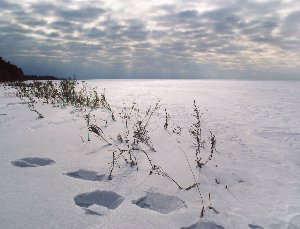 winter - Анна Крюкова