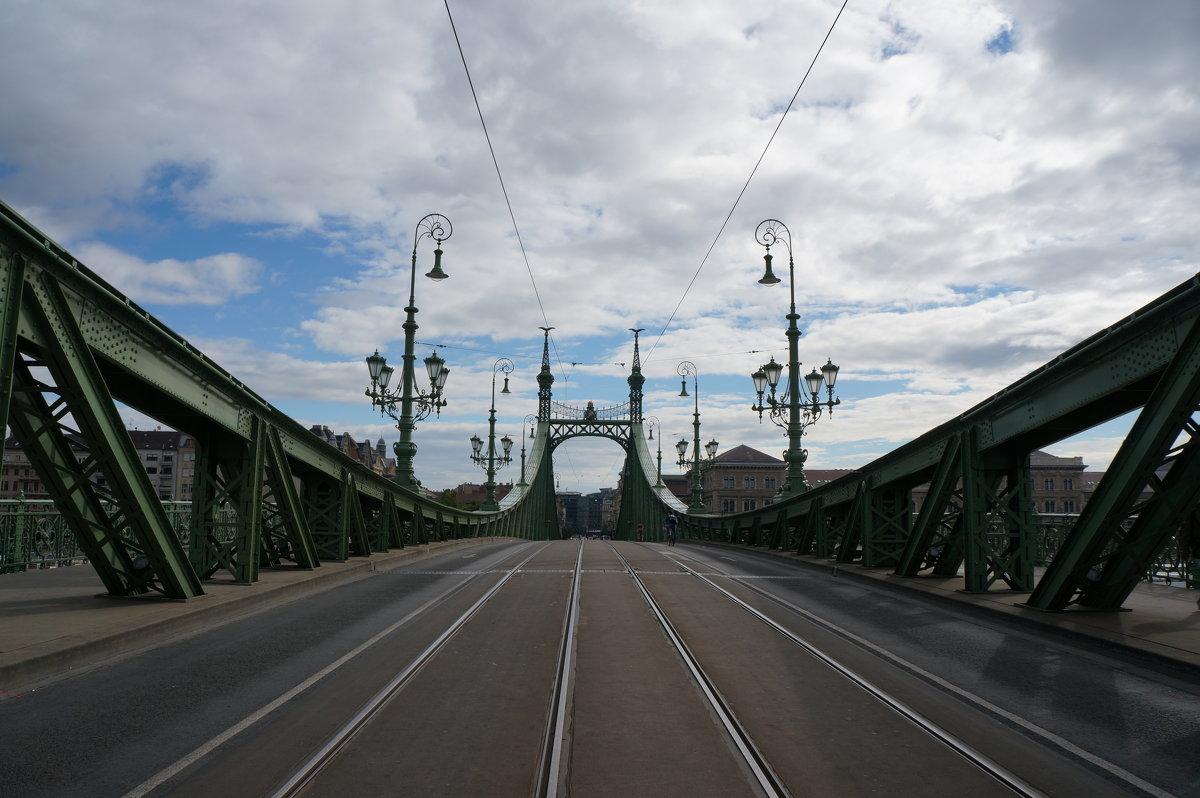 Мост Свободы. Будапешт - Алёна Савина