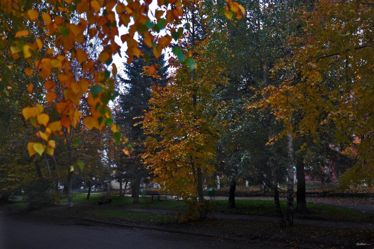 Осенний скверик - Юрий
