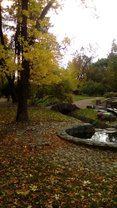 Осень в Александровском саду. (Санкт-Петербург) - Светлана Калмыкова
