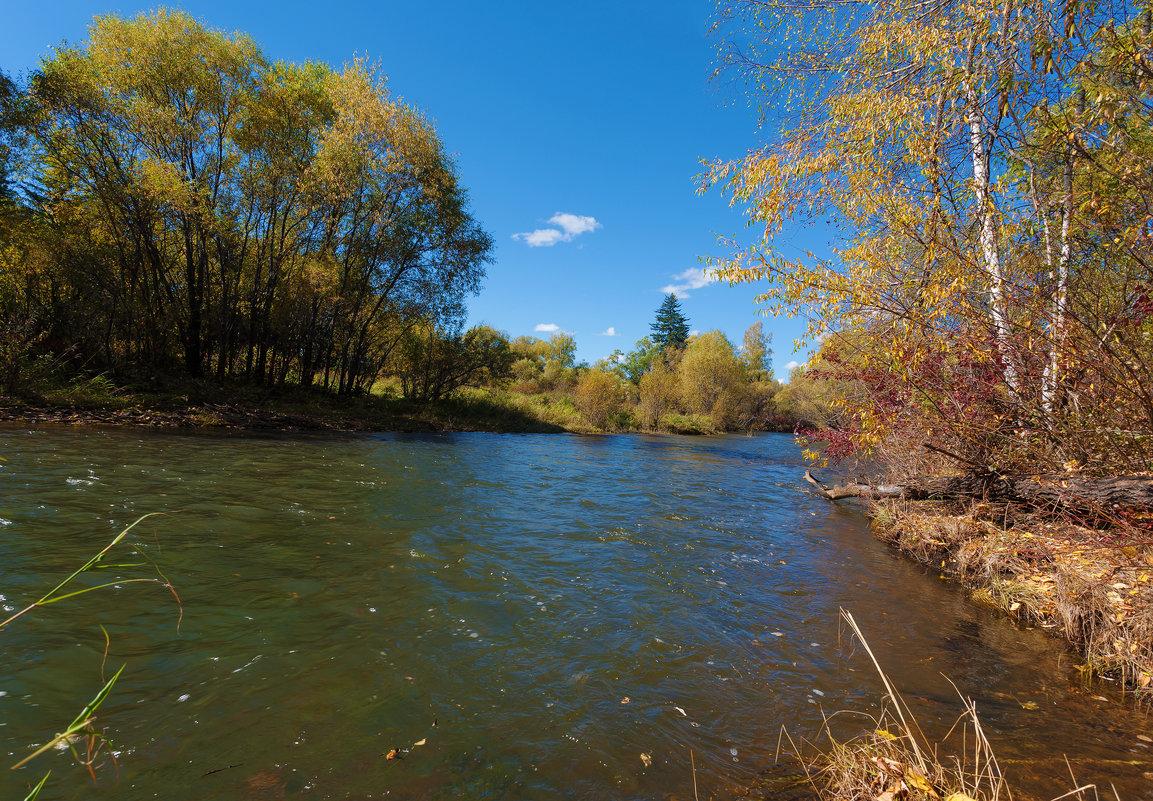 Река уносит сброшенные листья - Анатолий Иргл