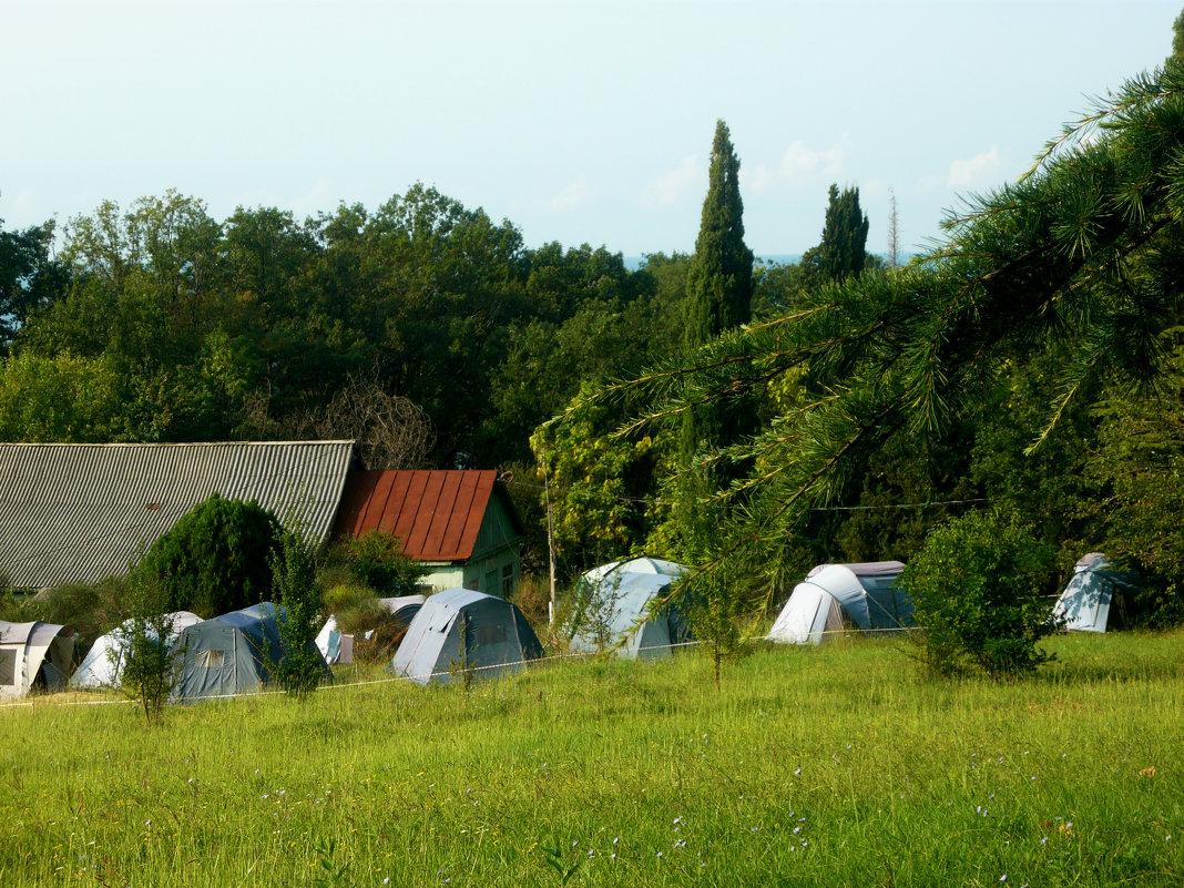 Палаточный лагерь - Надежда