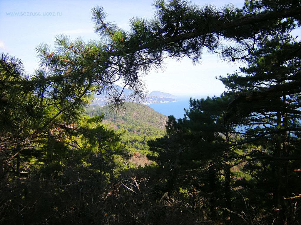 На горе Каракули-Кая - Руслан Newman