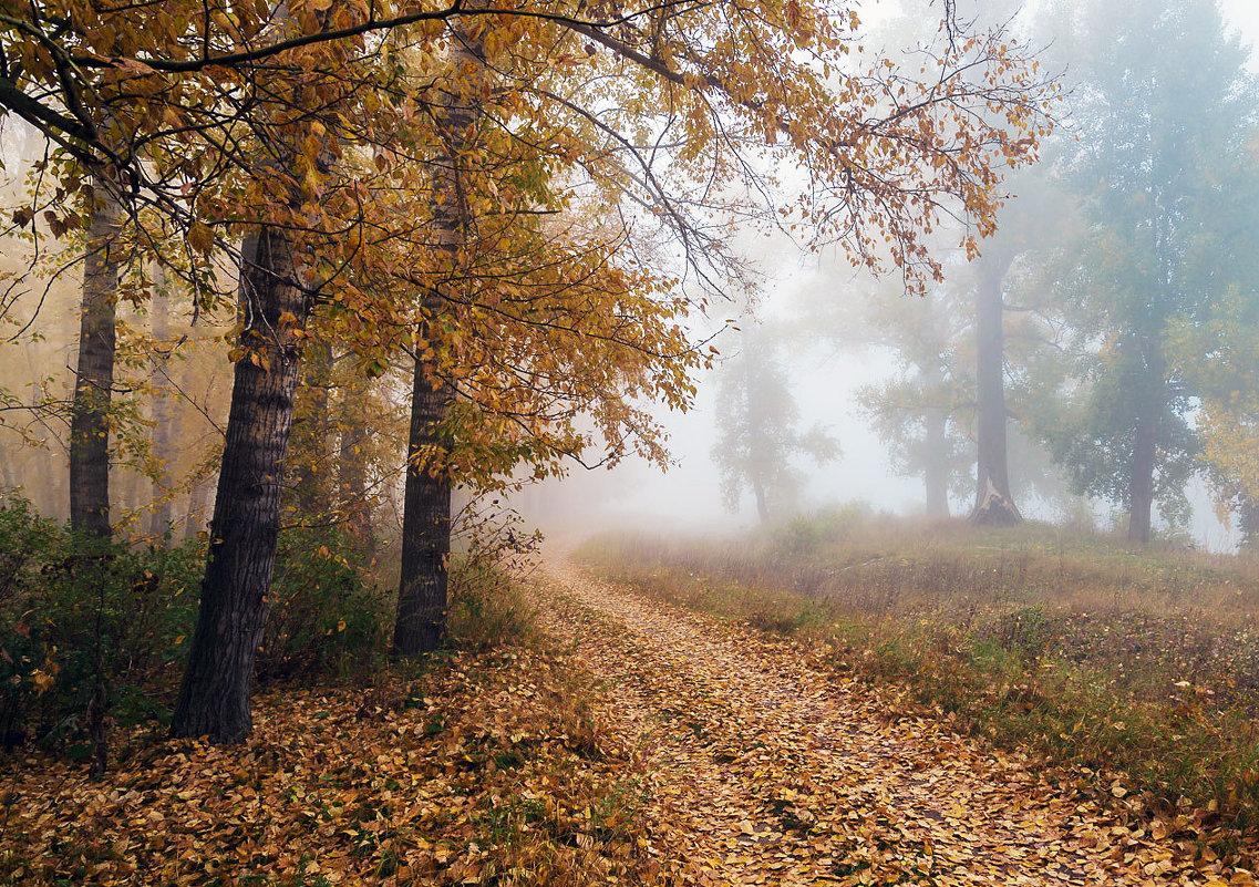 Осенний туман - Любовь Потеряхина