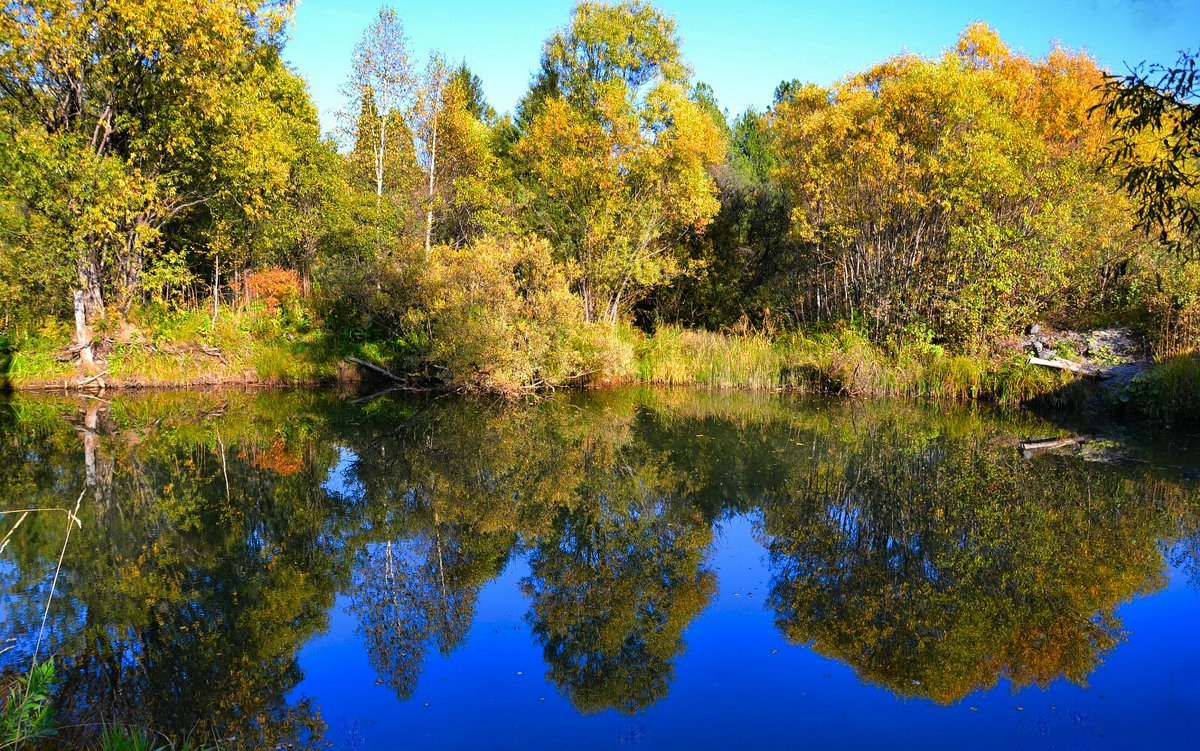 Вода как зеркало - Милешкин Владимир Алексеевич