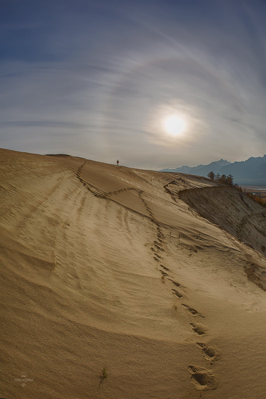 Прогулка по Баргузинской долине* - Павел Федоров