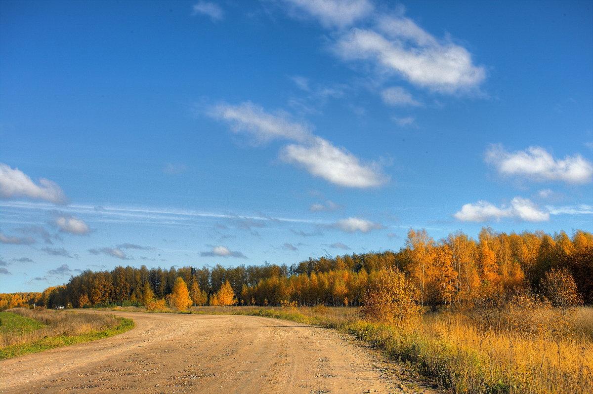 Осенняя дорога - Nikita Volkov