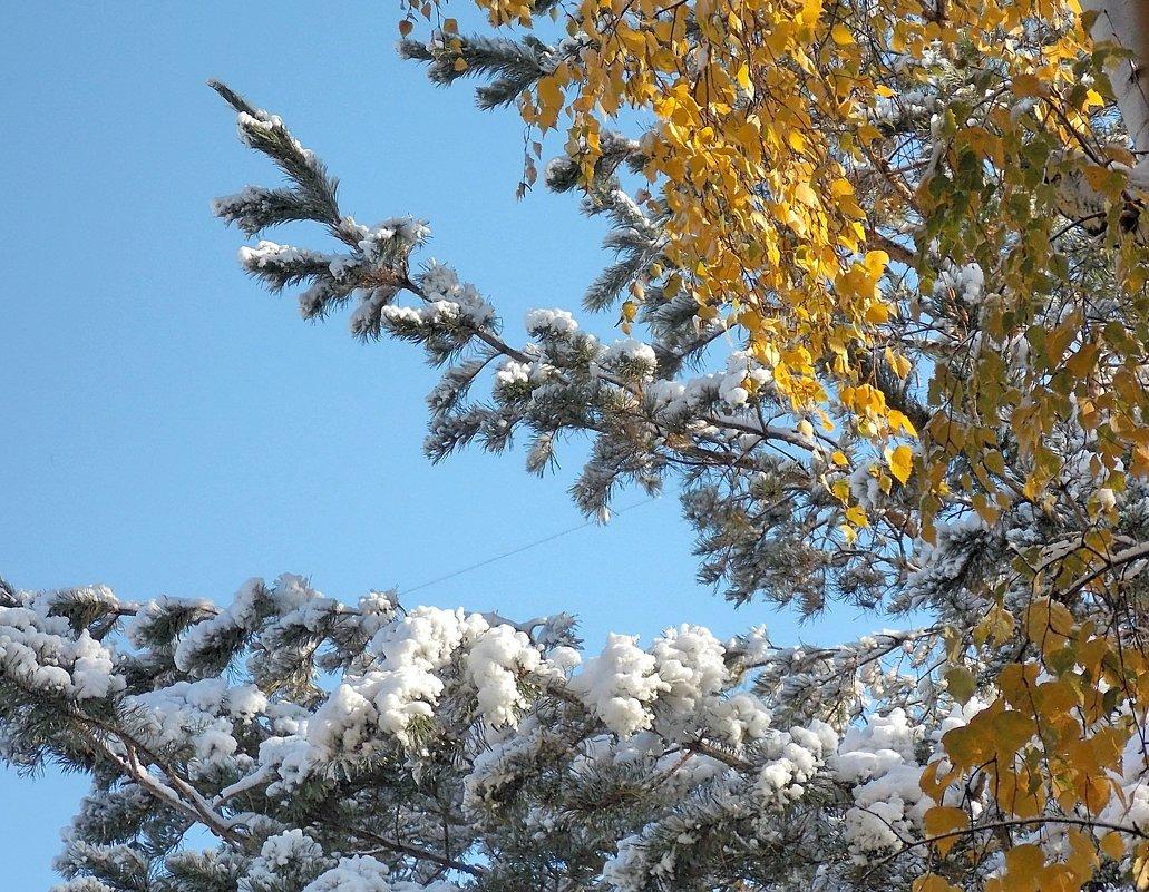 Недолго продержится первый снег - Domna Kuznechic